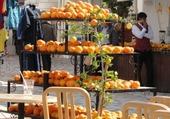 Puzzle Puzzle Oranges tunisiennes
