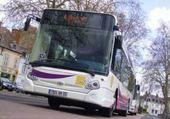 Puzzle gratuit bus aléo