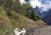 Taquin abreuvoir des Alpes