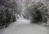 Jeu puzzle chemin sous la neige