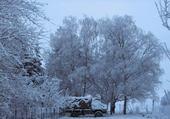vue de la neige