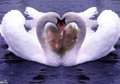 Puzzle Taquin mon ange et moi jtm