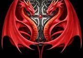 Taquin dragno diabla rouge