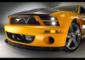 Puzzles mustang
