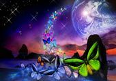 Puzzles papillons