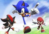 Puzzle Sonic et shadow et knukels