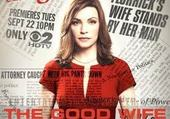 Puzzles the good wife