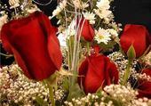 Puzzle roses et muguet