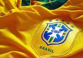 Puzzle brasil