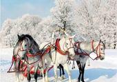 Puzzle chevaux en hiver