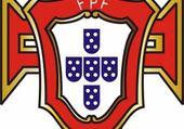 Puzzle FPF