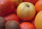 Jeux de puzzle : Vive les fruits !
