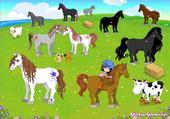 Puzzle parc a poney