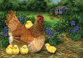 Jeux de puzzle : maman poule
