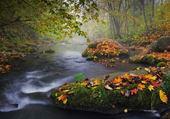 Puzzle cours d'eau