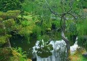 Puzzle Paysage Chinois