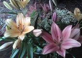 Jeu puzzle fleurs de lys