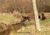 Puzzle ruisseau