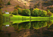 Puzzle en ligne paysage vert