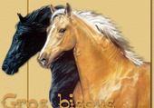 Jeux de puzzle : les chevaux