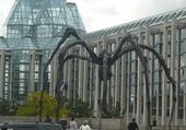Puzzle Ottawa Musée des Beaux Arts