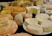 Puzzles Oh les beaux fromages !!
