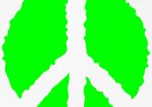 Puzzle en ligne vert