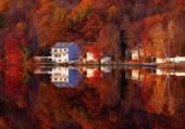 Puzzle gratuit feuilles rouge