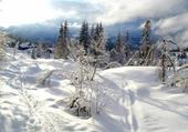 Puzzle neige