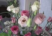 Jeu puzzle jolies fleurs