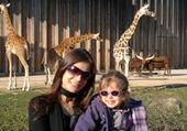 Puzzle gratuit au zoo