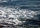 Puzzle océan