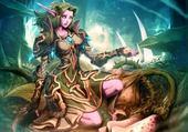 Puzzle World of warcraft elfe de la nuit