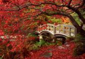 Puzzle Puzzle en ligne Jardin japonais