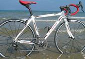 Puzzle vélo cours