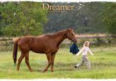 Puzzle Puzzle Film Dreamer 2005