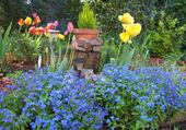 Puzzle gratuit jardin fleuri