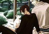 Jeu puzzle Itachi et Kisame avec un chat