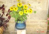 Jeu puzzle bouquet de soleil