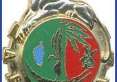 Puzzle Légion Etrangère,4ème RE
