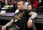 Puzzle Randy Orton qui observe un match