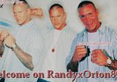 Puzzle Randy Orton