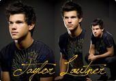 Puzzle Taylor Lautner, le plus beau