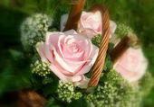 Puzzle panier de roses