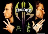 Jeu puzzle the hardy boyz