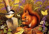 Puzzle Puzzle ecureuil