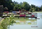 au bord d'un étang