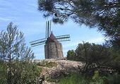 Puzzle moulin de Daudet