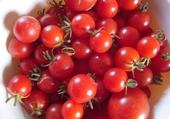 Puzzle tomates cerises