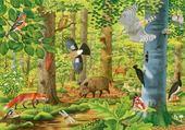 Jeux de puzzle : paradis en forêt